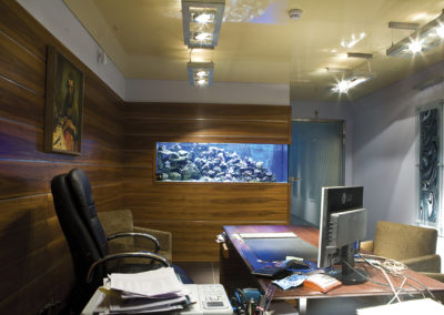 AquaMedic realizacje